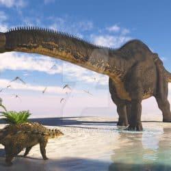 Apatosaurus by Jk