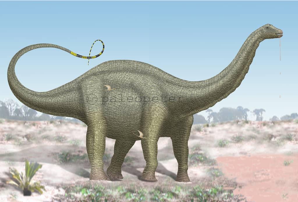 Výsledek obrázku pro apatosaurus