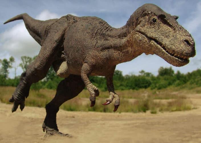 Gorgosaurus by Spike Ekins