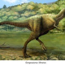 Gorgosaurus by Pablo Lara