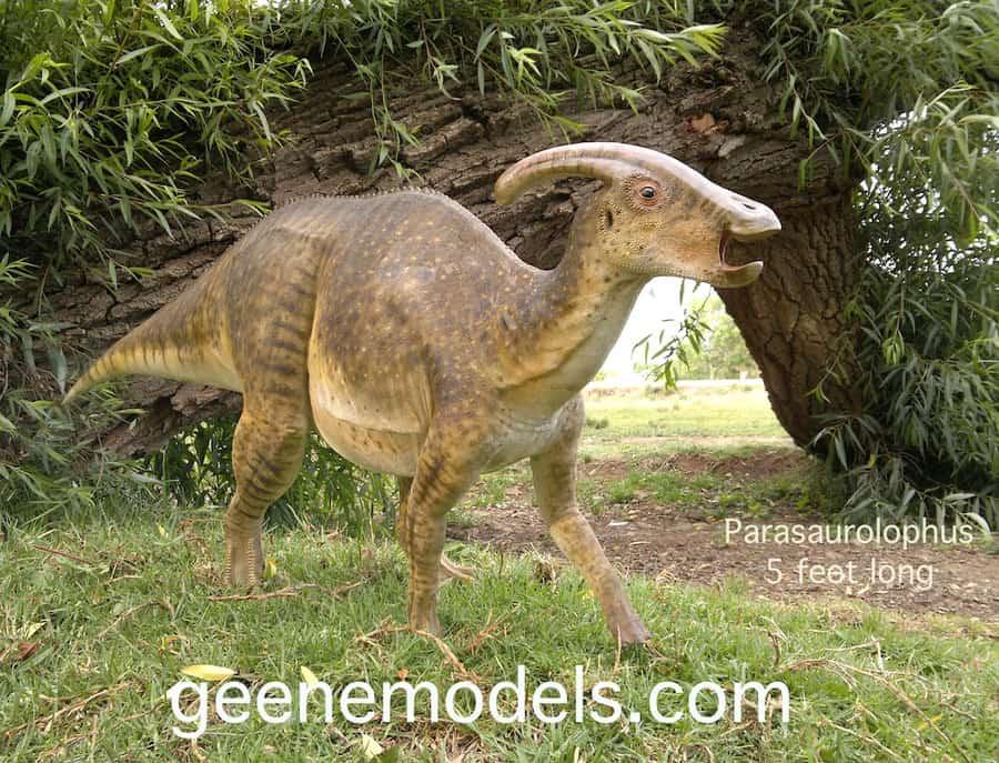 Parasaurolophus by Galileo Nunez