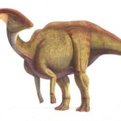 Parasaurolophus by Saul Velasco Martel