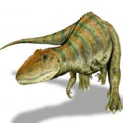 Carcharodontosaurus by Nobu Tamura