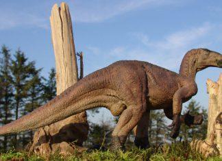 Iguanodon by Spike Ekins