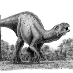 Iguanodon by Camilo