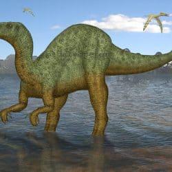 Iguanodon by Peter Montgomery