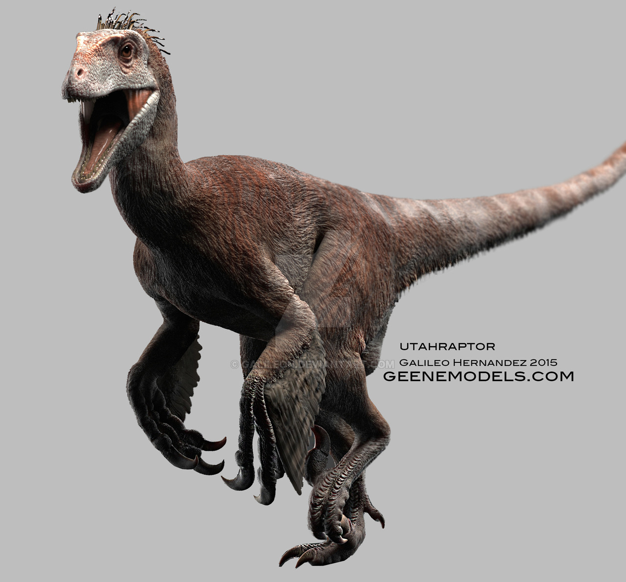 utahraptor facts and pictures