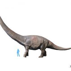 Dreadnoughtus by Nobu Tamura