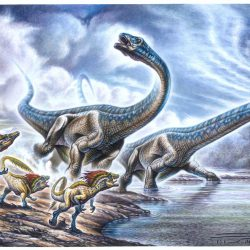 Dreadnoughtus by Fabio Pastori