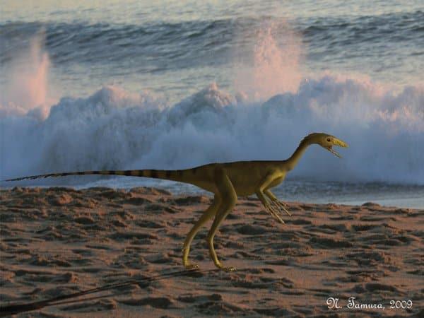 Compsognathus by Nobu Tamura