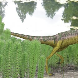 Compsognathus by Peter Montgomery