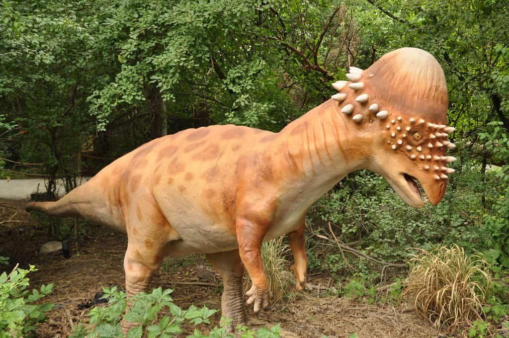 Pachycephalosaurus by Ricky Beckett