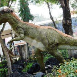 Pachycephalosaurus by Ricardo Ramirez