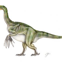 Therizinosaurus by Sergio Perez