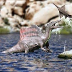 Spinosaurus by Nobu Tamura