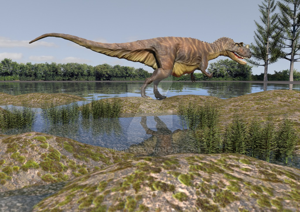 Ceratosaurus by Anthony Numbat