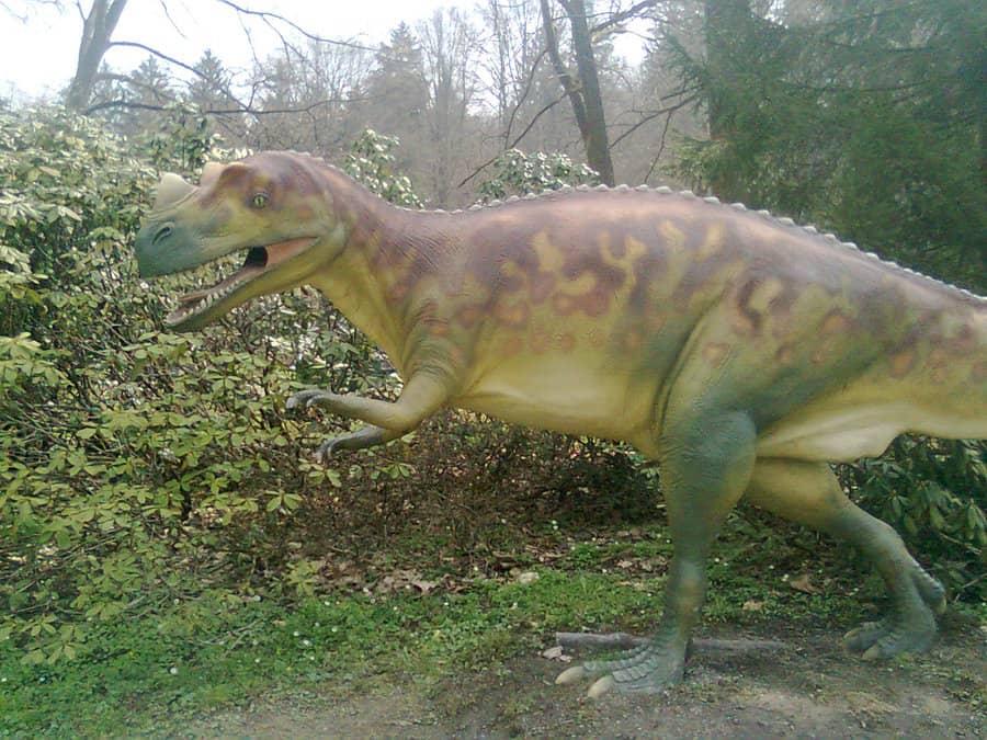 Ceratosaurus by Charlie