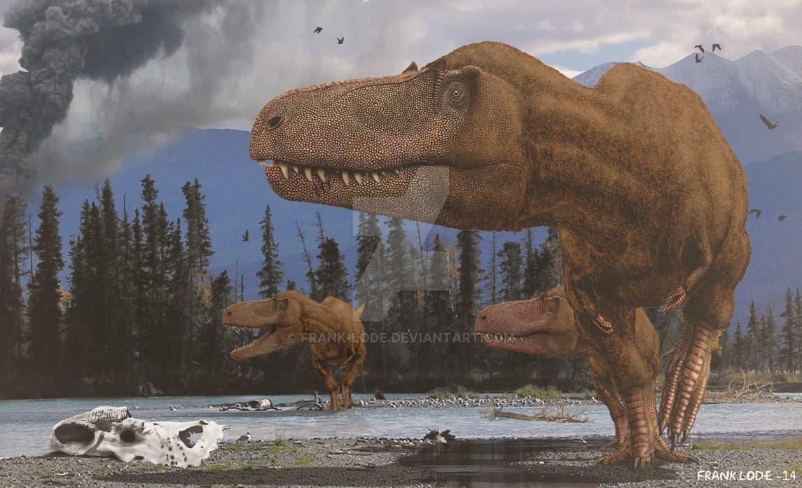 Albertosaurus by Frank Lode