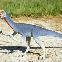 Oviraptor by Zero_Sen