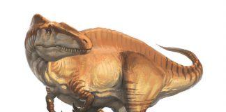 Acrocanthosaurus by L. D. Austin