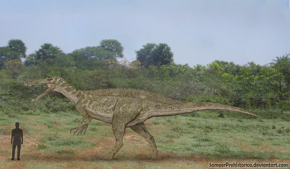 Suchomimus by SameerPrehistorica