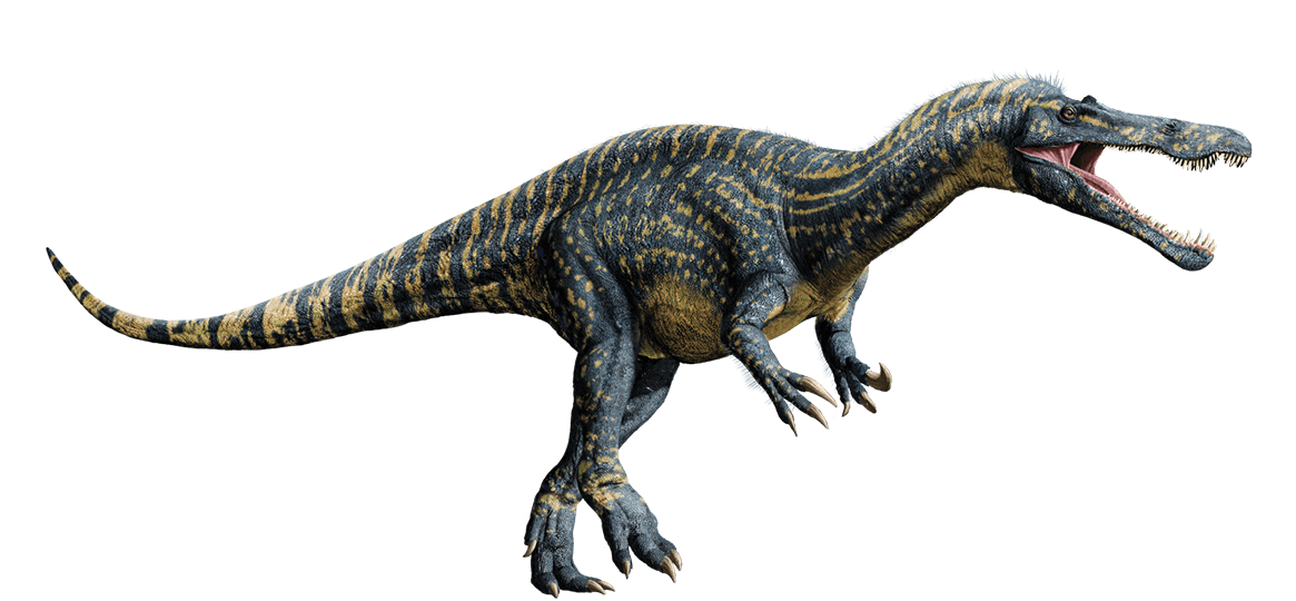 Suchomimus by Hunter Richer