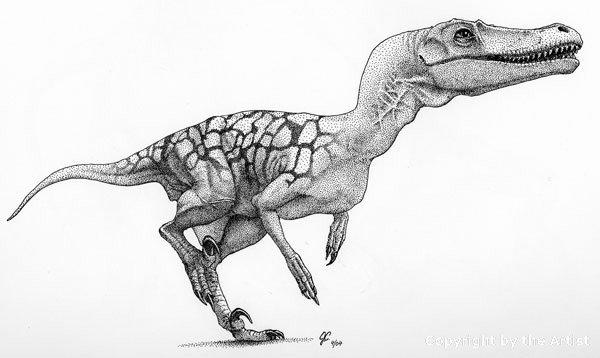 Velociraptor by Julius Csotonyi