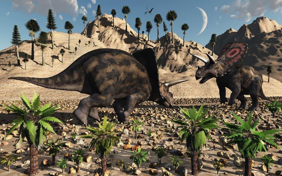 Torosaurus by Mark A Stevenson