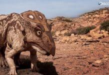Protoceratops by Vlad Konstantinov