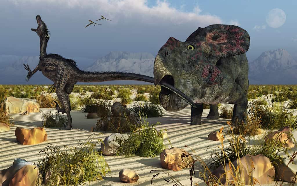 Protoceratops by Mark A Stevenson