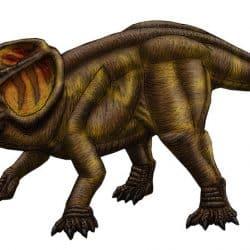 Protoceratops by Jose Vitor E. Da Silva