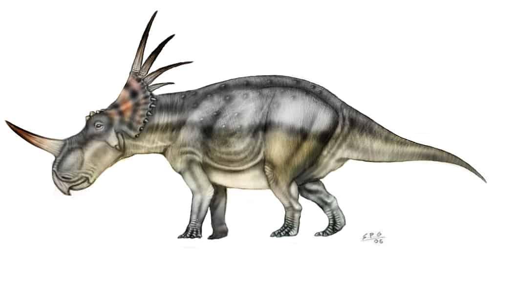 Styracosaurus by Sergio Perez