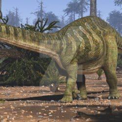Brontosaurus by Jk