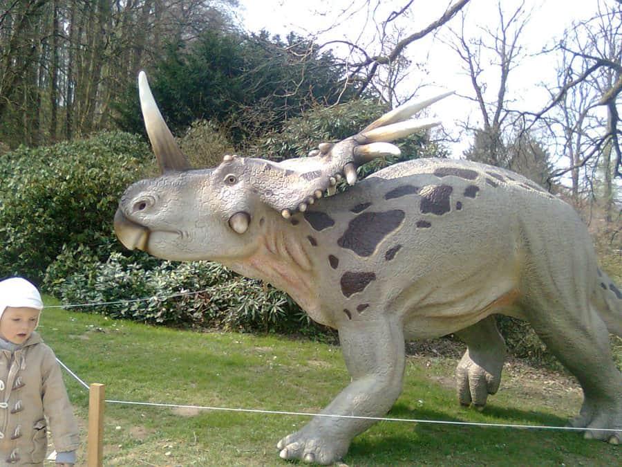 Styracosaurus by Charlie