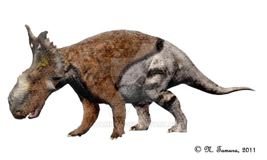 Pachyrhinosaurus by Nobu Tamura