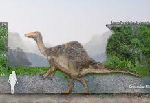 Deinocheirus by SameerPrehistorica