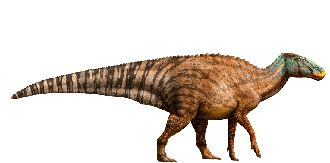 Edmontosaurus by William Sepulveda