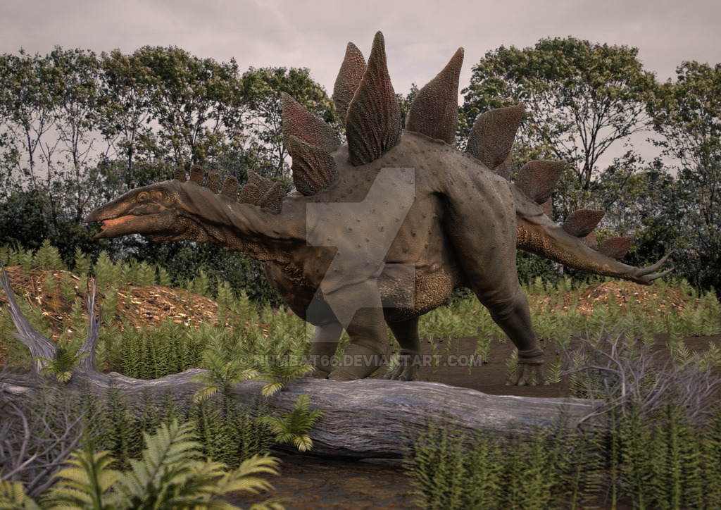 Stegosaurus by Anthony Numbat