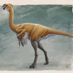 Gigantoraptor by Ariel