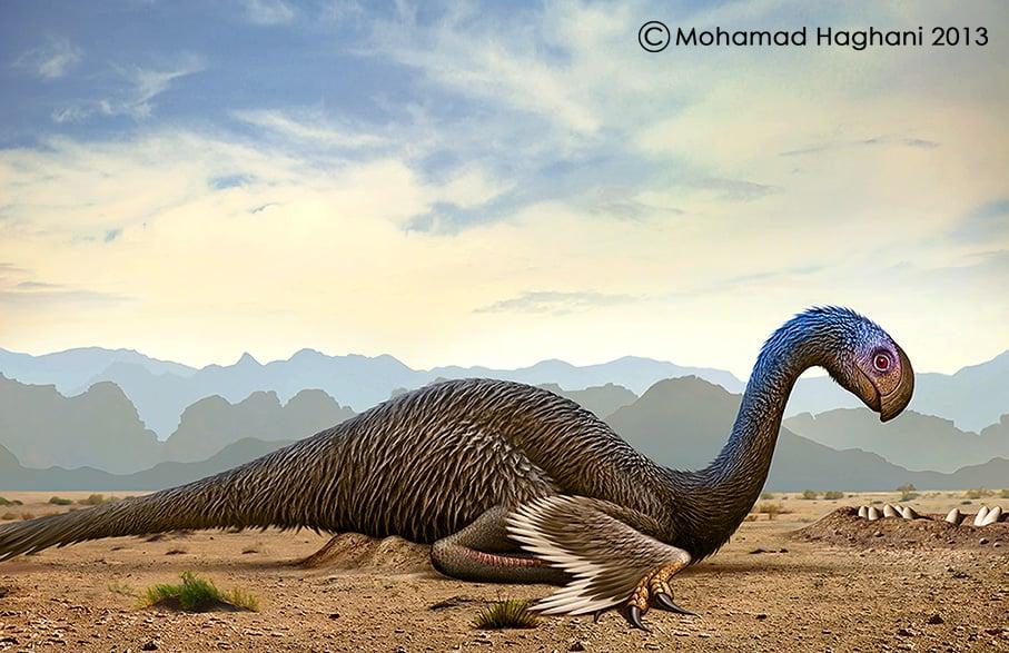 Gigantoraptor by Mohamad Haghani
