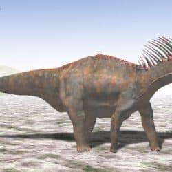 Amargasaurus by Nobu Tamura