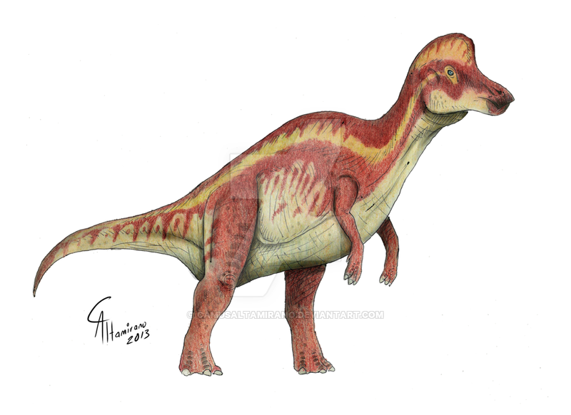 Corythosaurus by Camus Altamirano