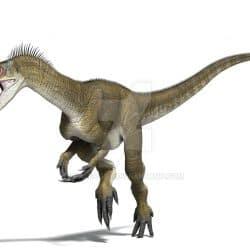 Eoraptor by Jk