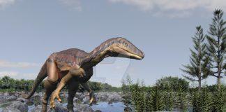Eoraptor by Anthony