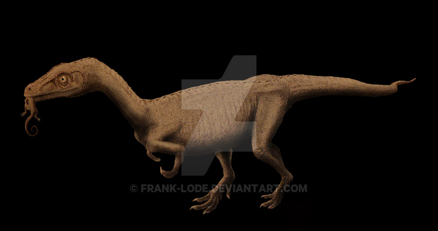 Eoraptor by Frank Lode