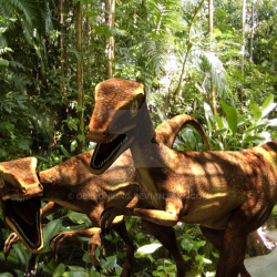 Eoraptor by Matias Ferrini