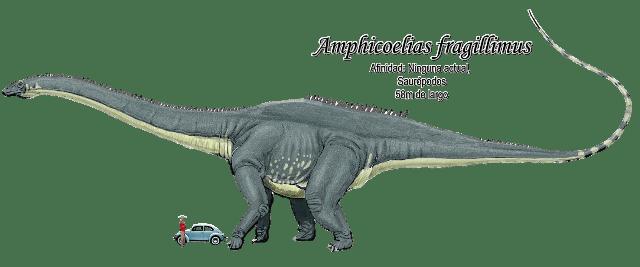 Resultado de imagen para amphicoelias