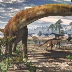 Camarasaurus by Jk