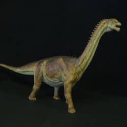 Camarasaurus by Martin Garratt