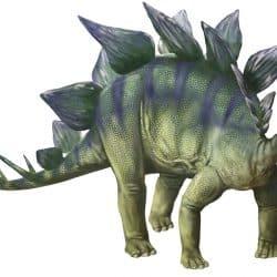 Stegosaurus by Karen Carr